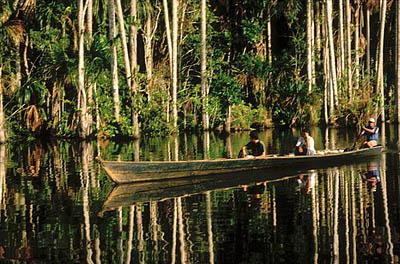 Amazon+forest+women