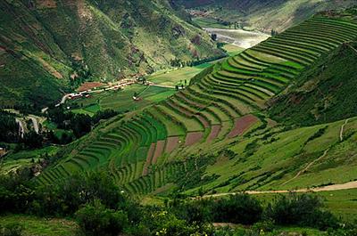 external image sacred_valley_pisaq_terrace.jpg